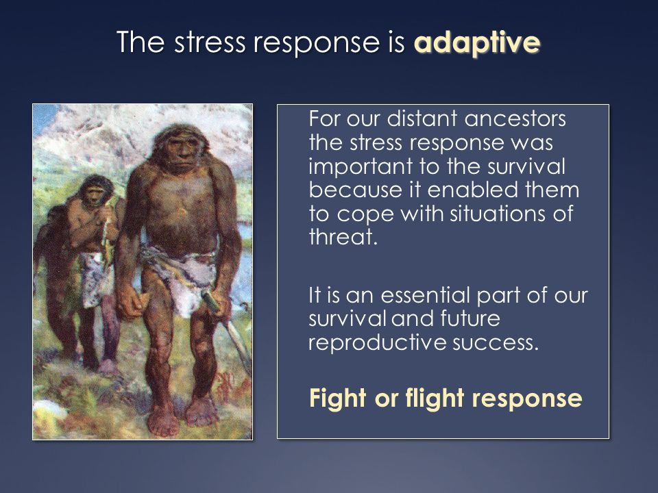 The stress response is adaptive For our distant ancestors the stress response was important to the survival because it enabled them to cope with situa