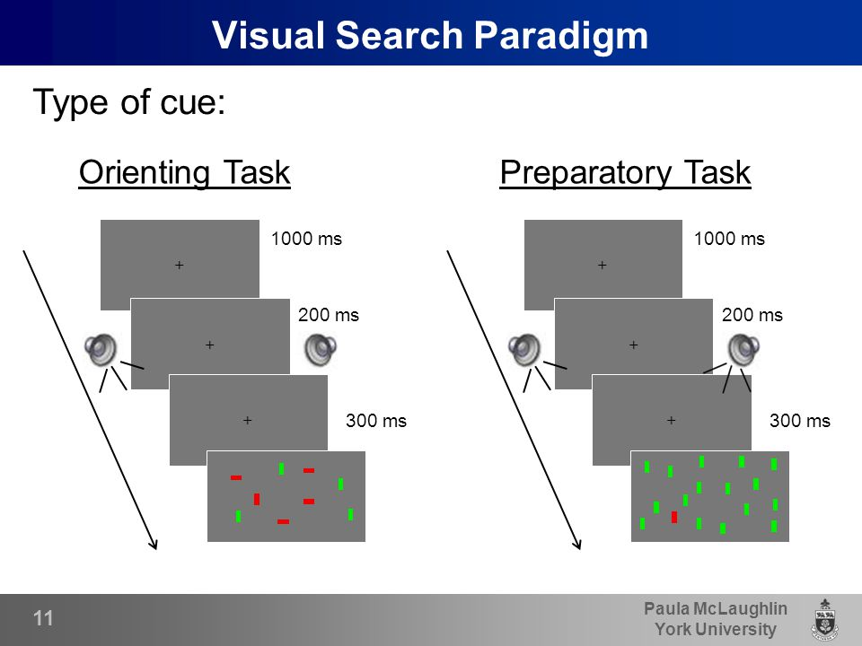 Paula McLaughlin York University Visual Search Paradigm Type of cue: 300 ms + + 1000 ms 200 ms + 300 ms + + 1000 ms 200 ms + Orienting Task Preparatory Task 11