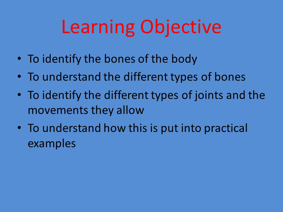 Success Criteria To create a skeleton labelling the bones and joints To be able to explain within practical examples what bones and joints are being used at any given time