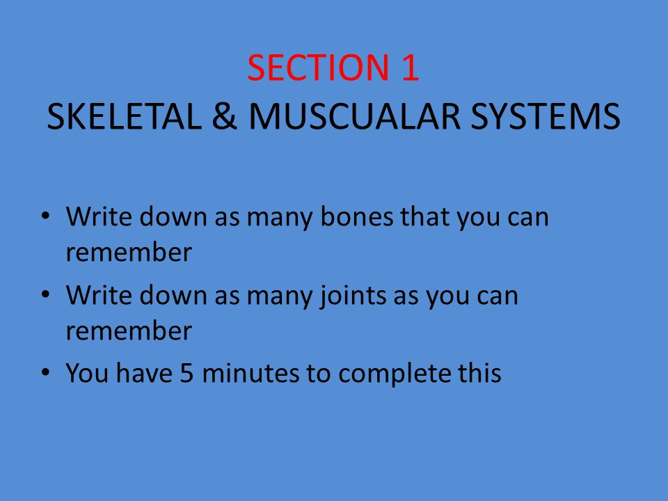 Activity 1 In groups of 4 complete the challenge Using the sheets of paper you must create the human skeleton using only the information that your team has written down from the previous activity The skeleton must be at least 3 foot long It must clearly show individual bones Also label the joints clearly in different colours Next to each major bone & joint label information about each (type, function etc) You have 30 minutes to complete this task