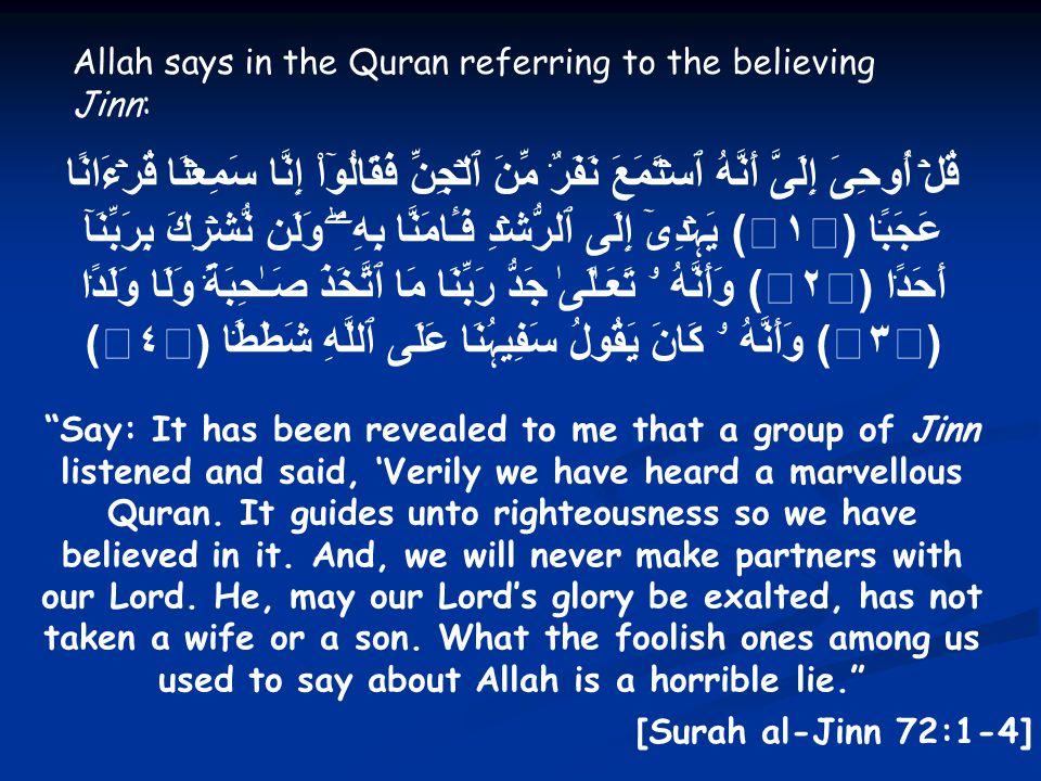 Allah says in the Quran referring to the believing Jinn: قُلۡ أُوحِىَ إِلَىَّ أَنَّهُ ٱسۡتَمَعَ نَفَرٌ۬ مِّنَ ٱلۡجِنِّ فَقَالُوٓاْ إِنَّا سَمِعۡنَا قُرۡءَانًا عَجَبً۬ا ( ١ ) يَہۡدِىٓ إِلَى ٱلرُّشۡدِ فَـَٔامَنَّا بِهِۦۖ وَلَن نُّشۡرِكَ بِرَبِّنَآ أَحَدً۬ا ( ٢ ) وَأَنَّهُ ۥ تَعَـٰلَىٰ جَدُّ رَبِّنَا مَا ٱتَّخَذَ صَـٰحِبَةً۬ وَلَا وَلَدً۬ا ( ٣ ) وَأَنَّهُ ۥ كَانَ يَقُولُ سَفِيہُنَا عَلَى ٱللَّهِ شَطَطً۬ا ( ٤ ) Say: It has been revealed to me that a group of Jinn listened and said, 'Verily we have heard a marvellous Quran.