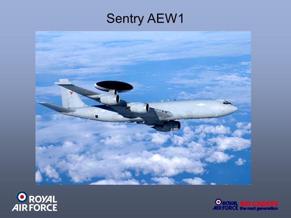 Sentry AEW1
