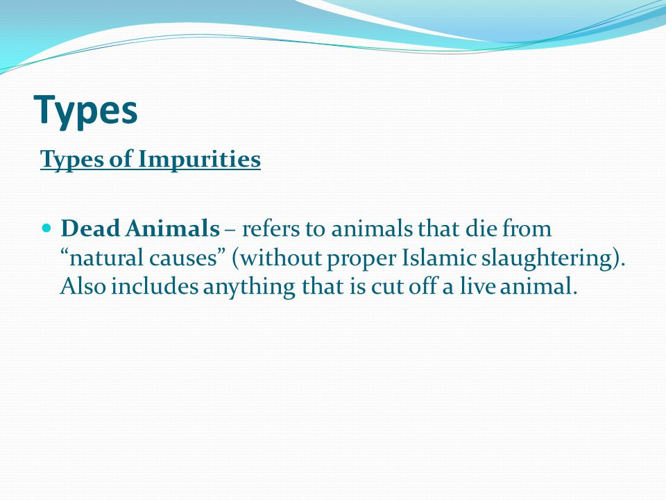 Types Types of Impurities Dead Animals – refers to animals that die from natural causes (without proper Islamic slaughtering).