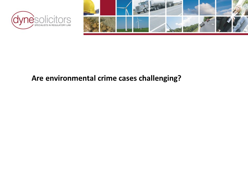 Are environmental crime cases challenging?