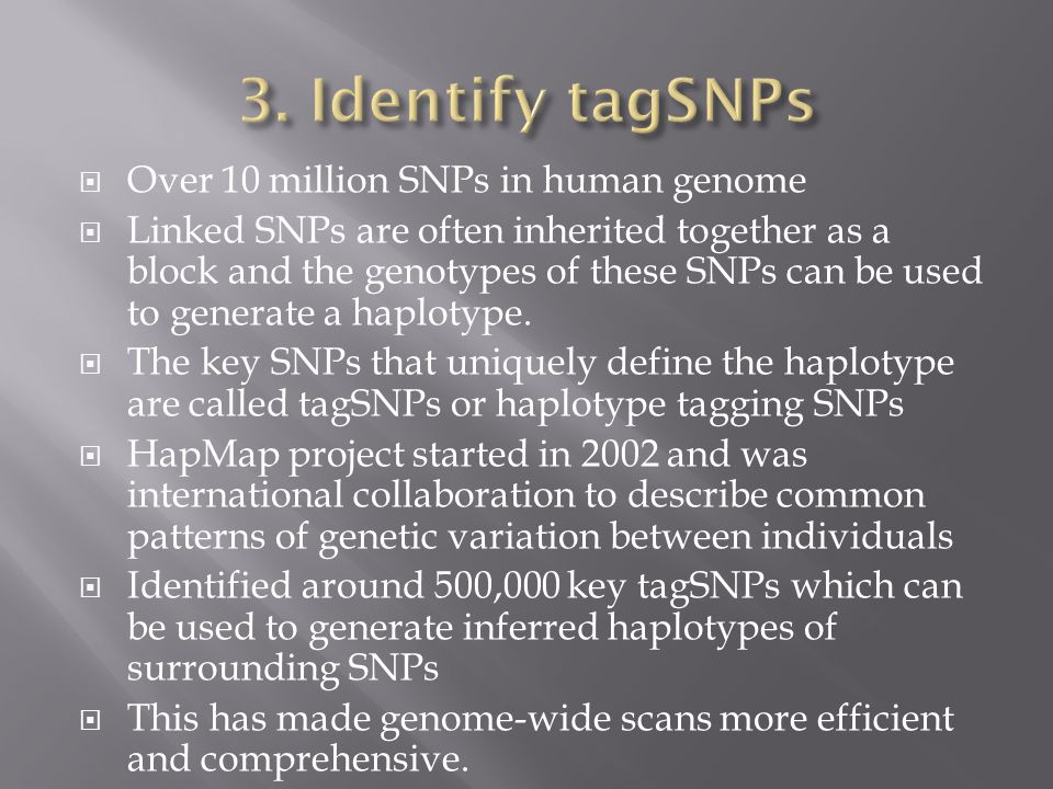  Over 10 million SNPs in human genome  Linked SNPs are often inherited together as a block and the genotypes of these SNPs can be used to generate a haplotype.