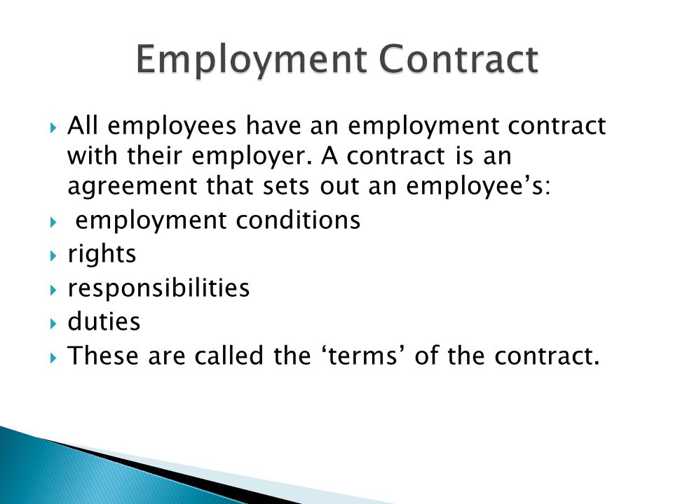  All employees have an employment contract with their employer.