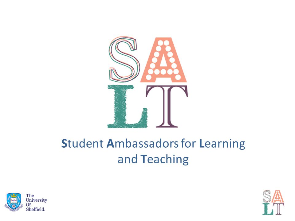 Student Ambassadors for Learning and Teaching