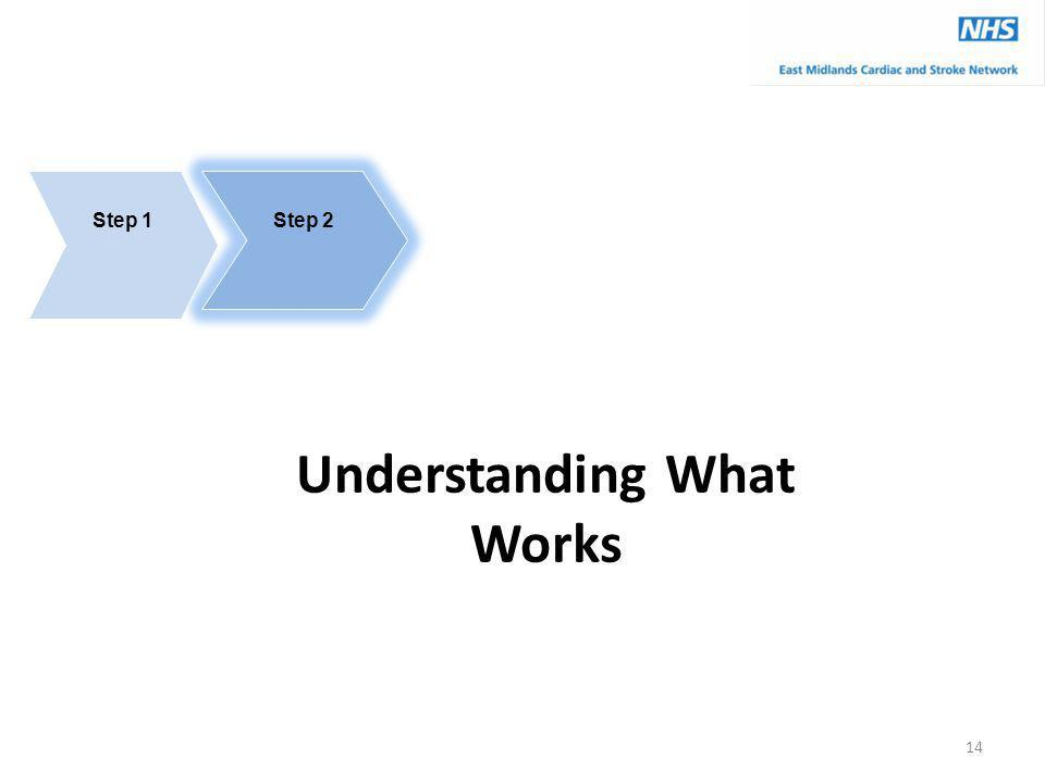 Step 2 Understanding What Works Step 1 14