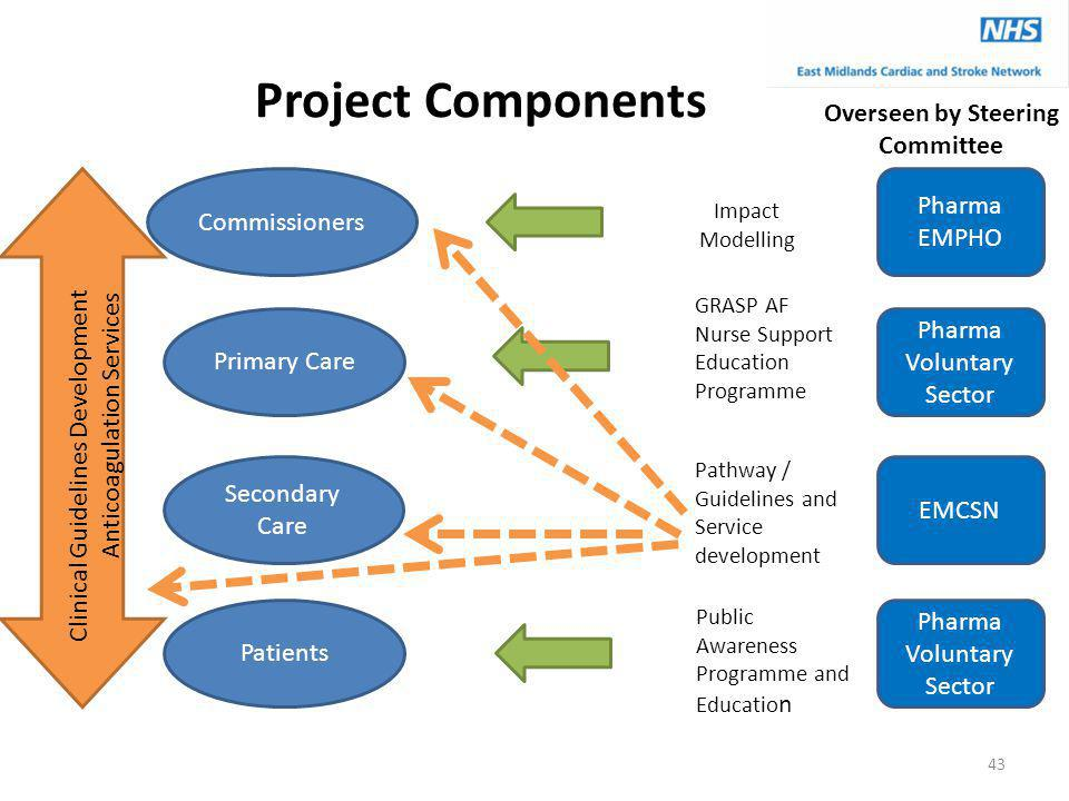 Project Components Commissioners Primary Care Secondary Care Patients Clinical Guidelines Development Anticoagulation Services Pharma EMPHO Pharma Voluntary Sector EMCSN Pharma Voluntary Sector Impact Modelling GRASP AF Nurse Support Education Programme Public Awareness Programme and Educatio n Overseen by Steering Committee Pathway / Guidelines and Service development 43