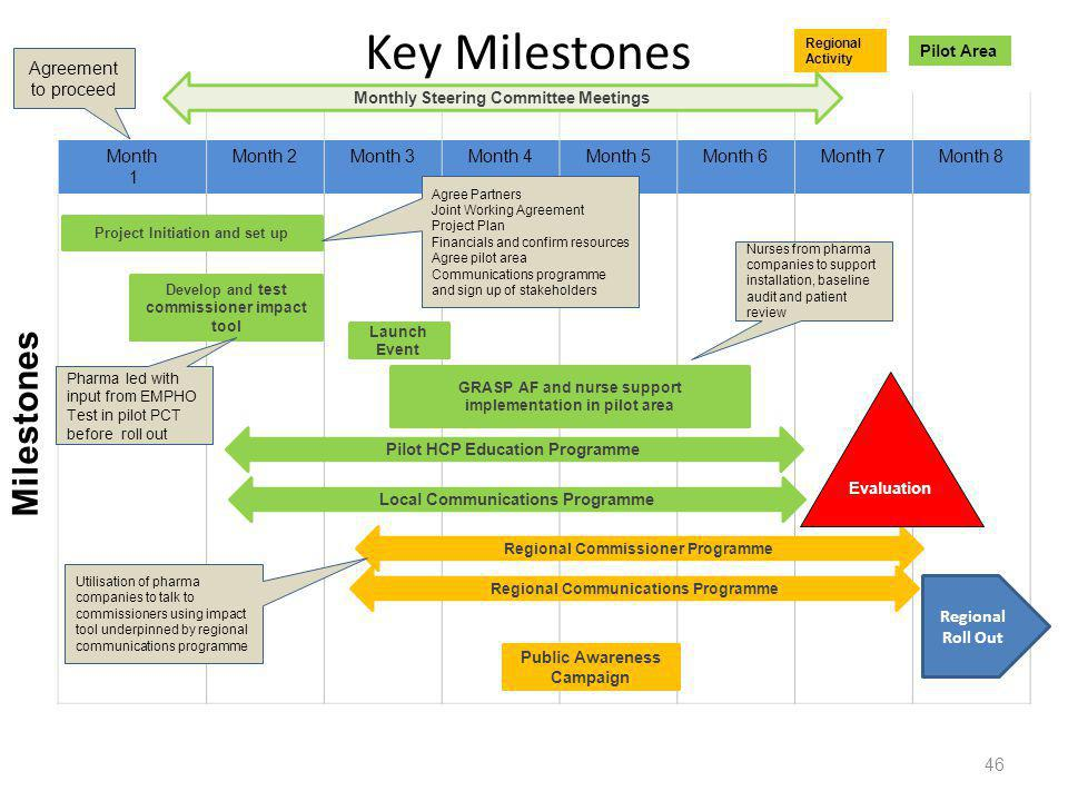 Key Milestones Month 1 Month 2Month 3Month 4Month 5Month 6Month 7Month 8 Launch Event Develop and test commissioner impact tool Project Initiation and