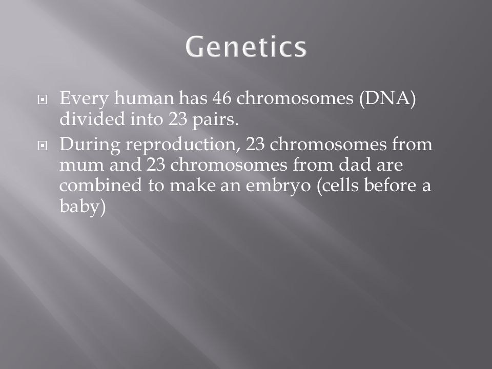 Genetics  Every human has 46 chromosomes (DNA) divided into 23 pairs.  During reproduction, 23 chromosomes from mum and 23 chromosomes from dad are