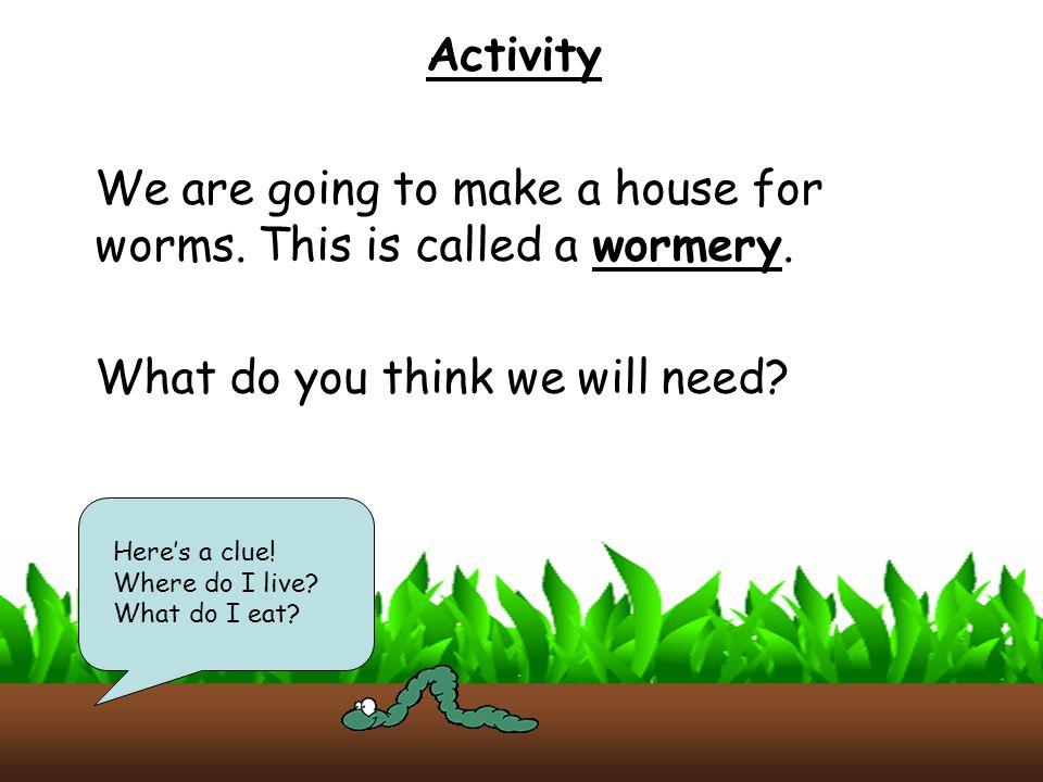 Quiz What do Earthworms eat.