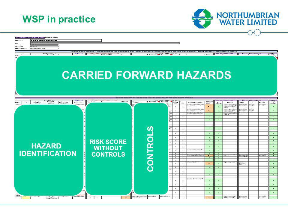 WSP in practice CARRIED FORWARD HAZARDS HAZARD IDENTIFICATION RISK SCORE WITHOUT CONTROLS CONTROLS