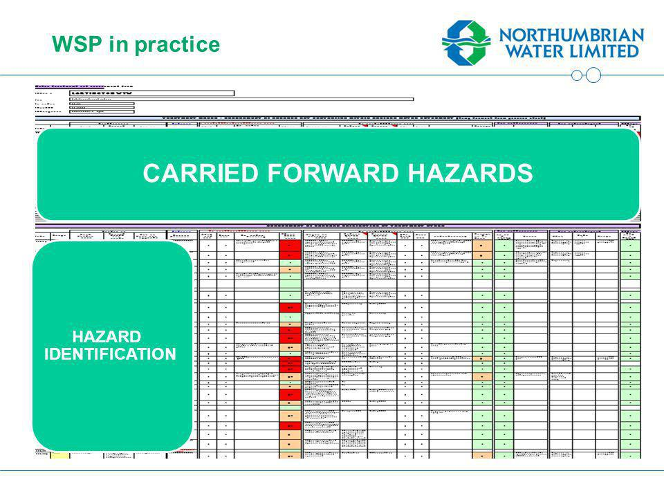 WSP in practice CARRIED FORWARD HAZARDS HAZARD IDENTIFICATION