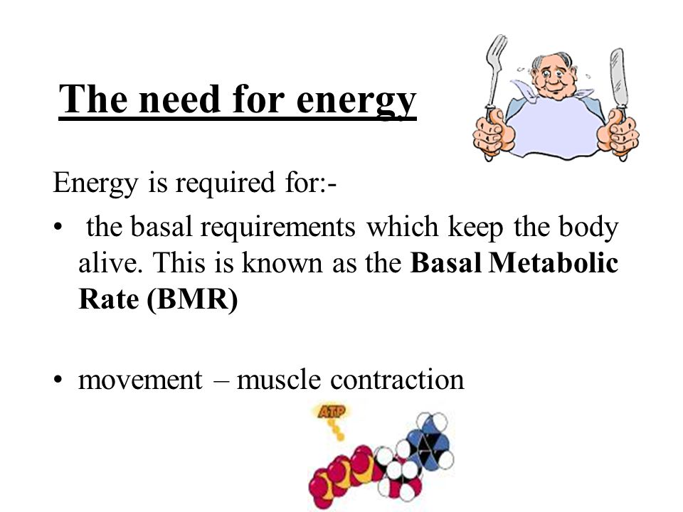 The need for energy Energy is required for:- the basal requirements which keep the body alive. This is known as the Basal Metabolic Rate (BMR) movemen