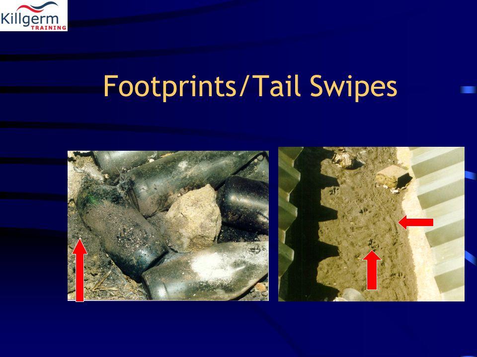 Footprints/Tail Swipes