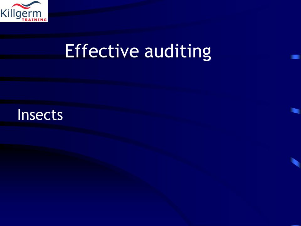 Effective auditing Insects