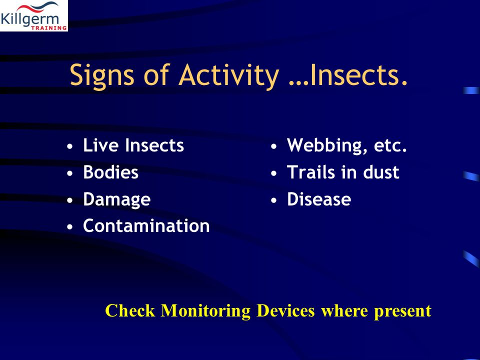 Signs of Activity …Insects. Live Insects Bodies Damage Contamination Webbing, etc.