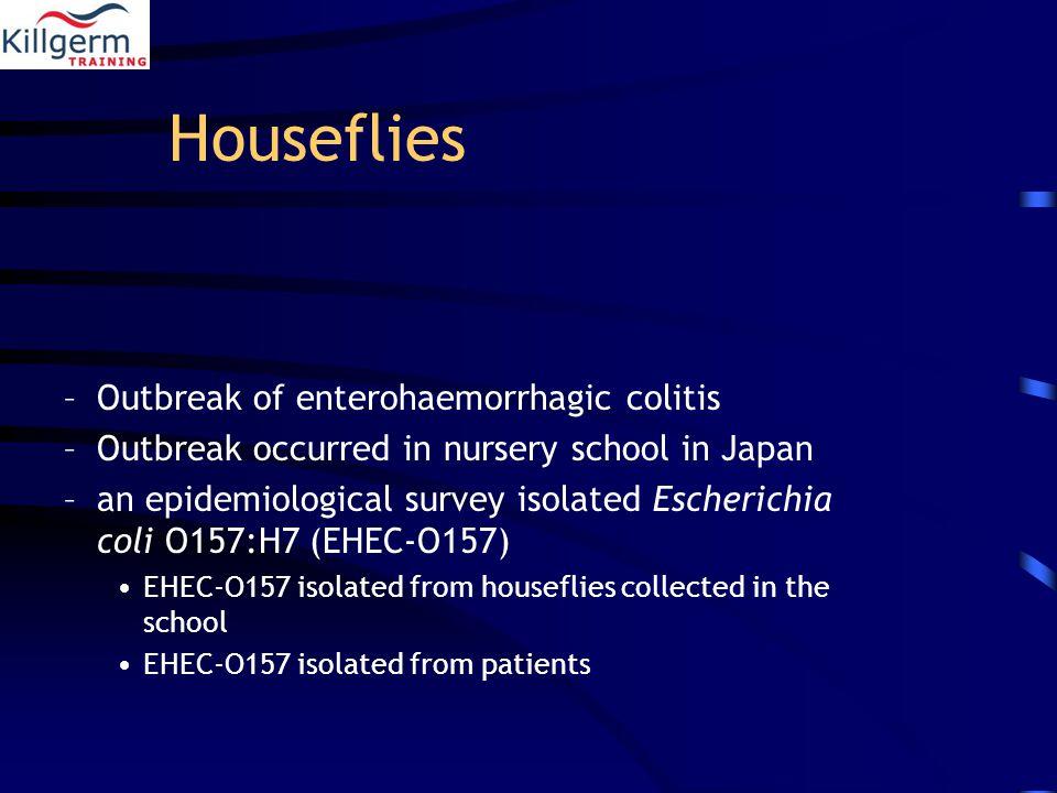 Houseflies –Outbreak of enterohaemorrhagic colitis –Outbreak occurred in nursery school in Japan –an epidemiological survey isolated Escherichia coli O157:H7 (EHEC-O157) EHEC-O157 isolated from houseflies collected in the school EHEC-O157 isolated from patients