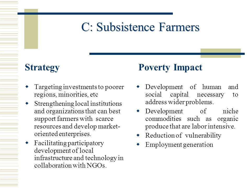 C: Subsistence Farmers C: Subsistence Farmers Strategy  Targeting investments to poorer regions, minorities, etc  Strengthening local institutions a