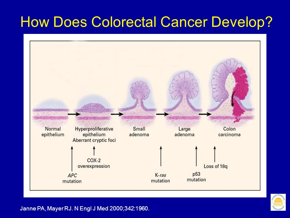 Colorectal cancer screening First assess RISK AVERAGE RISK INDIVIDUAL All patients age 50 years and older, the asymptomatic general population HIGH RISK Personal history – polyp or cancer Family history – polyp or cancer in first degree relatives