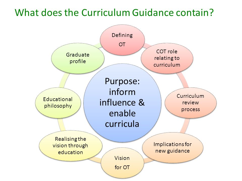What does the Curriculum Guidance contain.