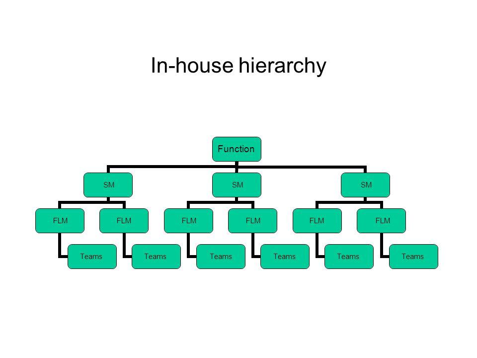In-house hierarchy Function SM FLM Teams FLM Teams SM FLM Teams FLM Teams SM FLM Teams FLM Teams