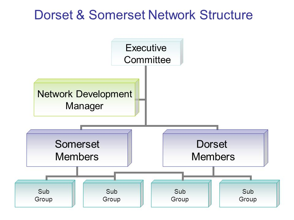Dorset & Somerset Network Structure
