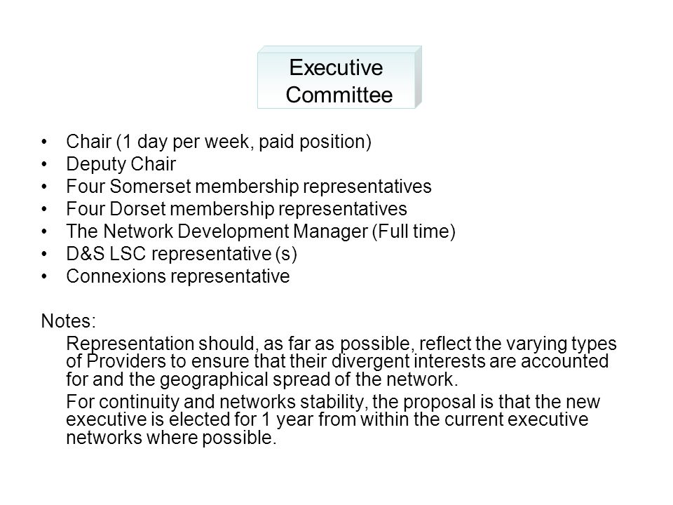 Chair (1 day per week, paid position) Deputy Chair Four Somerset membership representatives Four Dorset membership representatives The Network Development Manager (Full time) D&S LSC representative (s) Connexions representative Notes: Representation should, as far as possible, reflect the varying types of Providers to ensure that their divergent interests are accounted for and the geographical spread of the network.