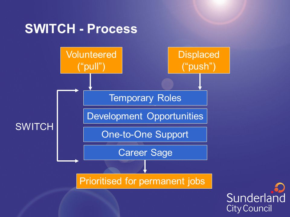"Development Opportunities Prioritised for permanent jobs SWITCH SWITCH - Process Temporary Roles One-to-One Support Career Sage Volunteered (""pull"") D"