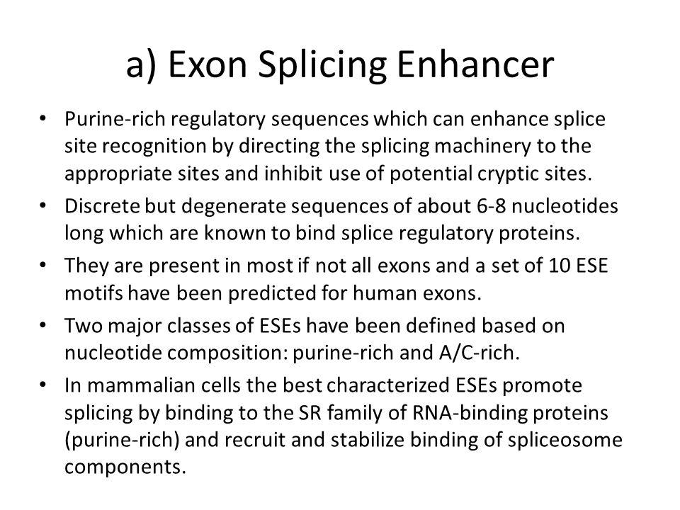 Splicing Microarray