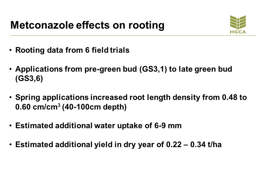 Metconazole effects on rooting Rooting data from 6 field trials Applications from pre-green bud (GS3,1) to late green bud (GS3,6) Spring applications increased root length density from 0.48 to 0.60 cm/cm 3 (40-100cm depth) Estimated additional water uptake of 6-9 mm Estimated additional yield in dry year of 0.22 – 0.34 t/ha
