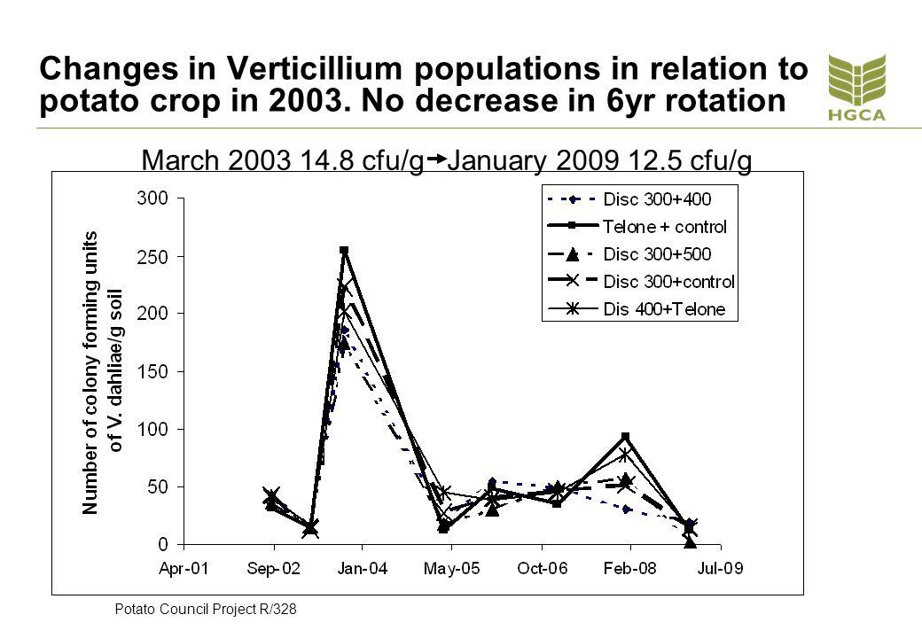 Changes in Verticillium populations in relation to potato crop in 2003.