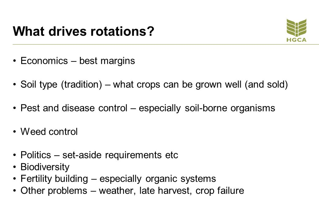 Sclerotinia and rotations Higher risk where OSR grown in short rotations or in rotations with other susceptible crops - Peas, potatoes, carrots and other veg crops Sclerotia are long-lived if buried deeply.