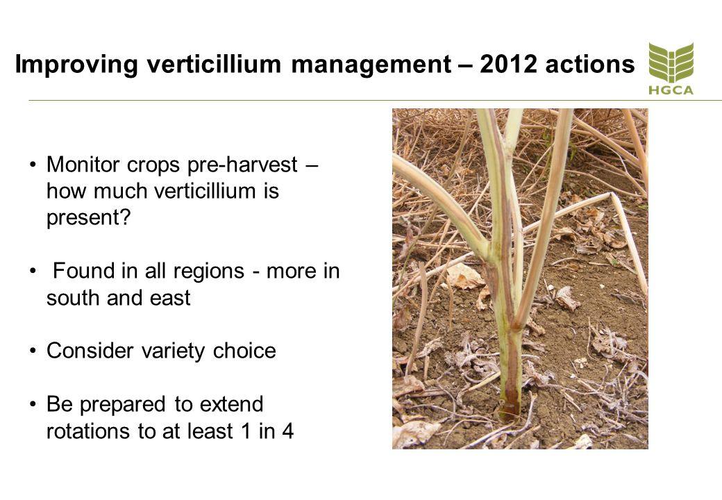 Improving verticillium management – 2012 actions Monitor crops pre-harvest – how much verticillium is present.