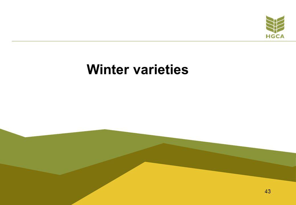 43 Winter varieties