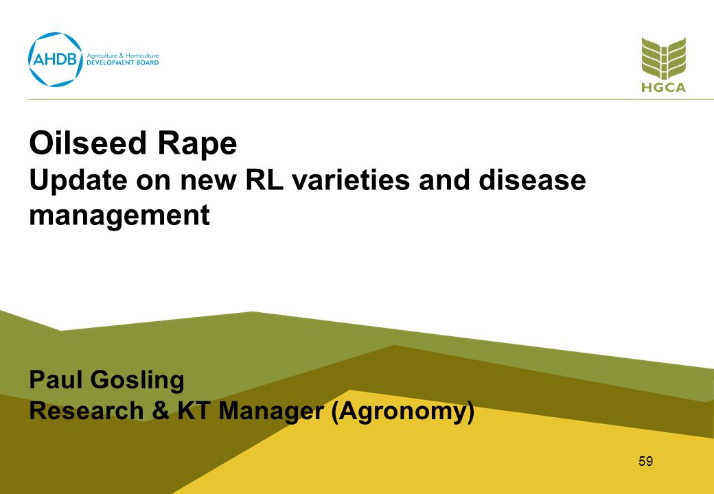 Oilseed Rape Update on new RL varieties and disease management Paul Gosling Research & KT Manager (Agronomy) 59