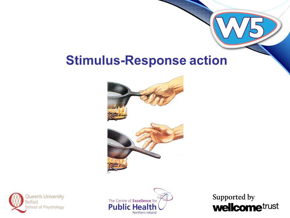 Stimulus-Response action