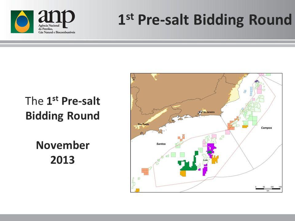 The 1 st Pre-salt Bidding Round November 2013 1 st Pre-salt Bidding Round