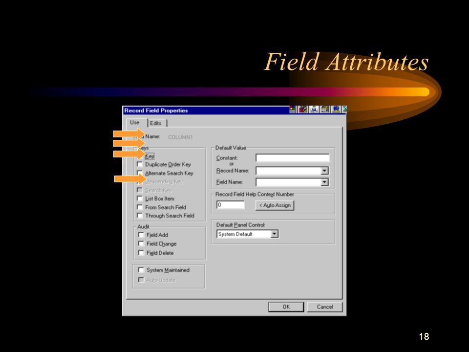 18 Field Attributes