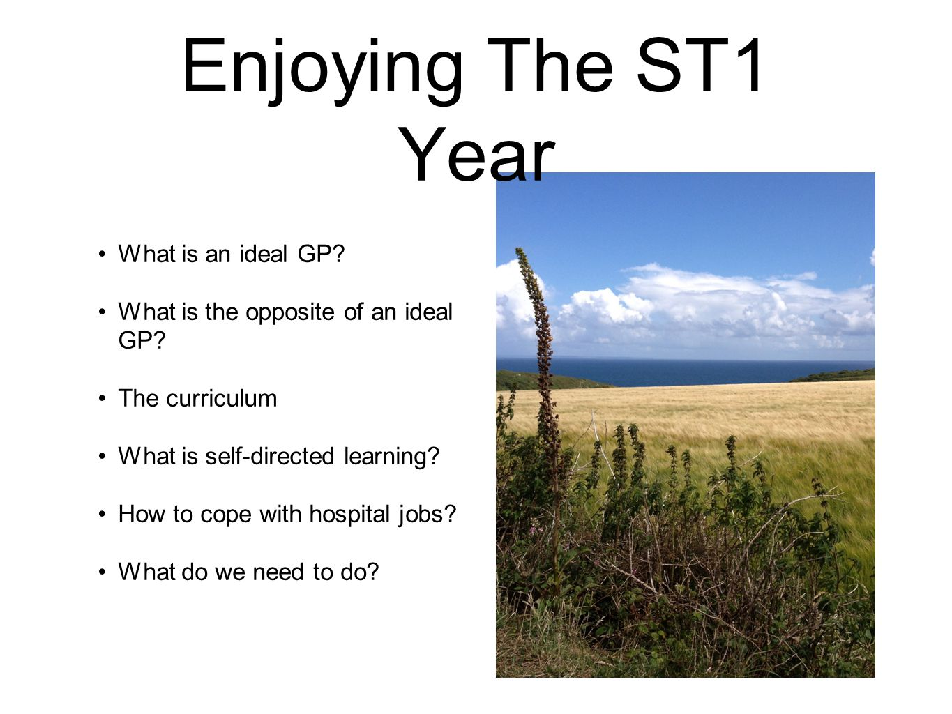 Enjoying The ST1 Year What is an ideal GP. What is the opposite of an ideal GP.