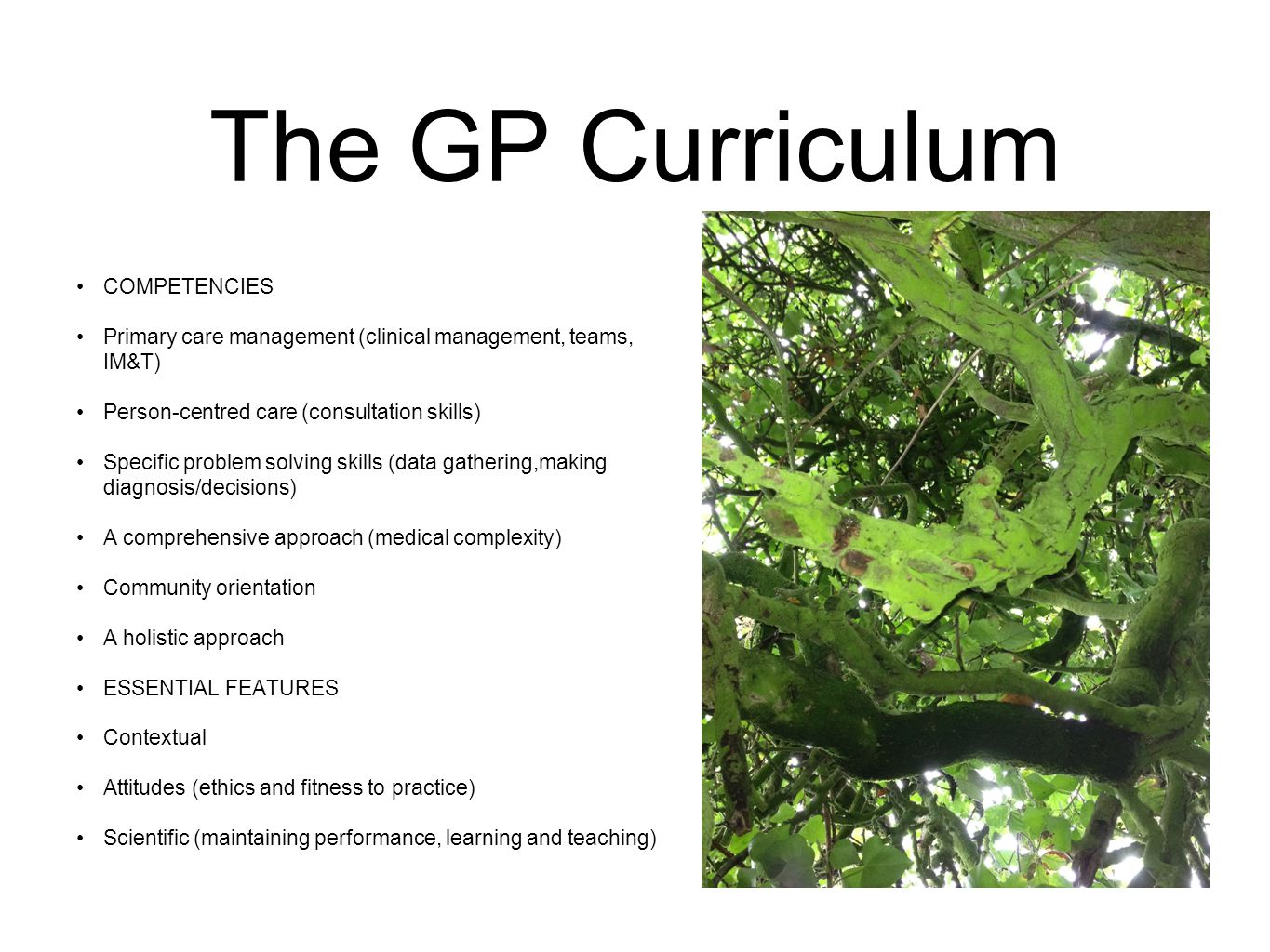 The GP Curriculum COMPETENCIES Primary care management (clinical management, teams, IM&T) Person-centred care (consultation skills) Specific problem solving skills (data gathering,making diagnosis/decisions) A comprehensive approach (medical complexity) Community orientation A holistic approach ESSENTIAL FEATURES Contextual Attitudes (ethics and fitness to practice) Scientific (maintaining performance, learning and teaching)