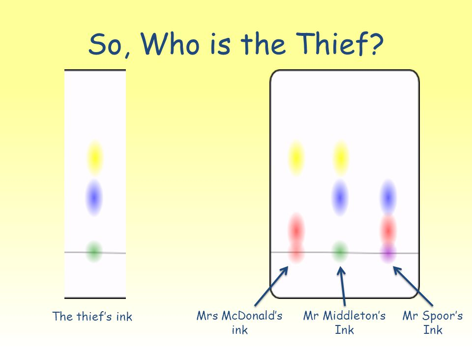 So, Who is the Thief? The thief's ink Mrs McDonald's ink Mr Middleton's Ink Mr Spoor's Ink