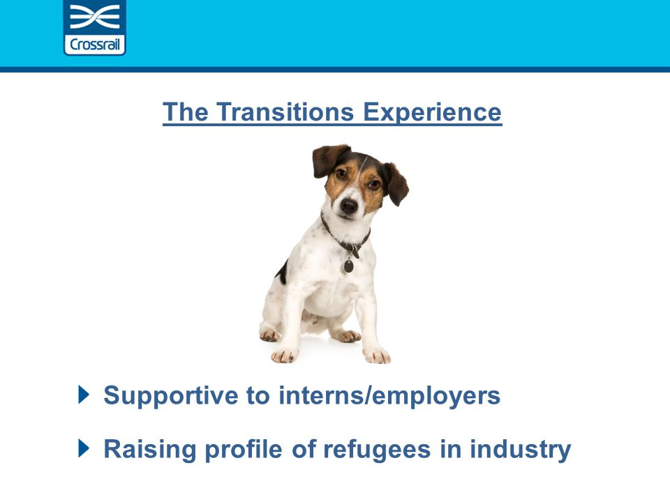 Supportive to interns/employers Raising profile of refugees in industry The Transitions Experience