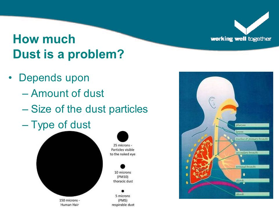 Depends upon –Amount of dust –Size of the dust particles –Type of dust How much Dust is a problem?
