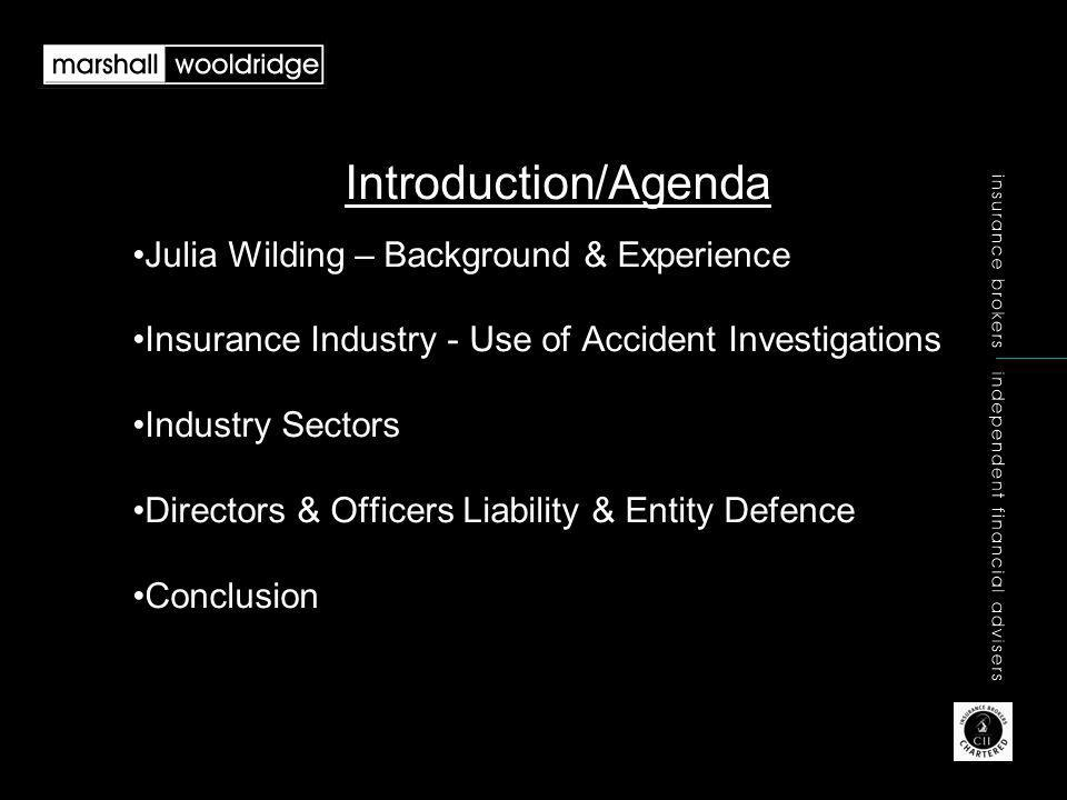 Introduction/Agenda Julia Wilding – Background & Experience Insurance Industry - Use of Accident Investigations Industry Sectors Directors & Officers Liability & Entity Defence Conclusion