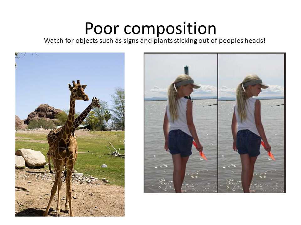 Poor composition Watch for objects such as signs and plants sticking out of peoples heads!