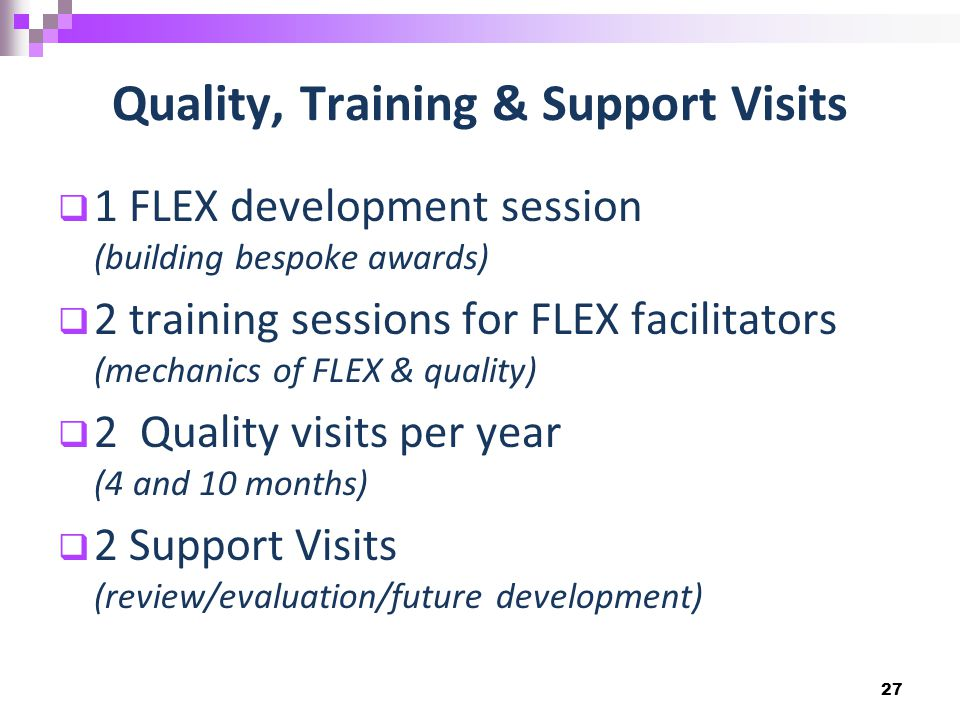 Quality, Training & Support Visits  1 FLEX development session (building bespoke awards)  2 training sessions for FLEX facilitators (mechanics of FLEX & quality)  2 Quality visits per year (4 and 10 months)  2 Support Visits (review/evaluation/future development) 27