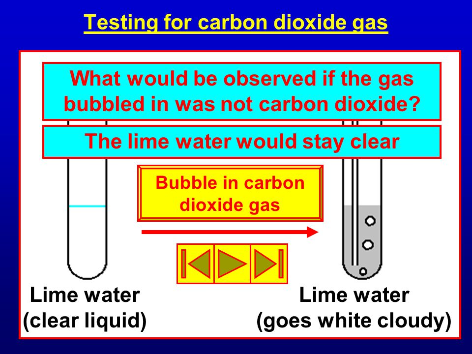 Testing for carbon dioxide gas Lime water (clear liquid) Lime water (goes white cloudy) What would be observed if the gas bubbled in was not carbon dioxide.