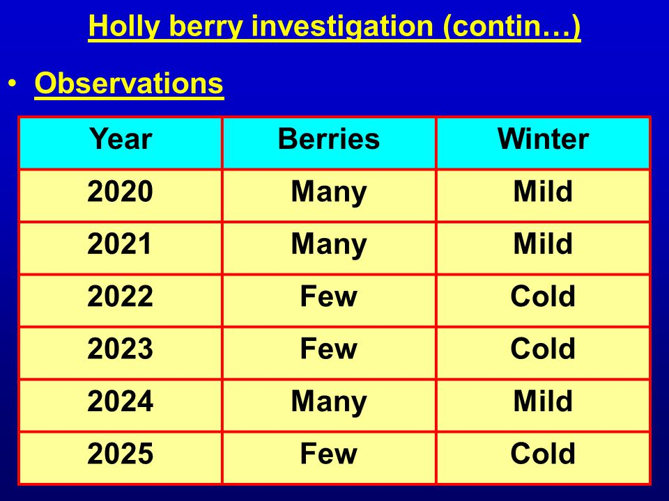 Holly berry investigation (contin…) YearBerriesWinter 2020ManyMild 2021ManyMild 2022FewCold 2023FewCold 2024ManyMild 2025FewCold Observations